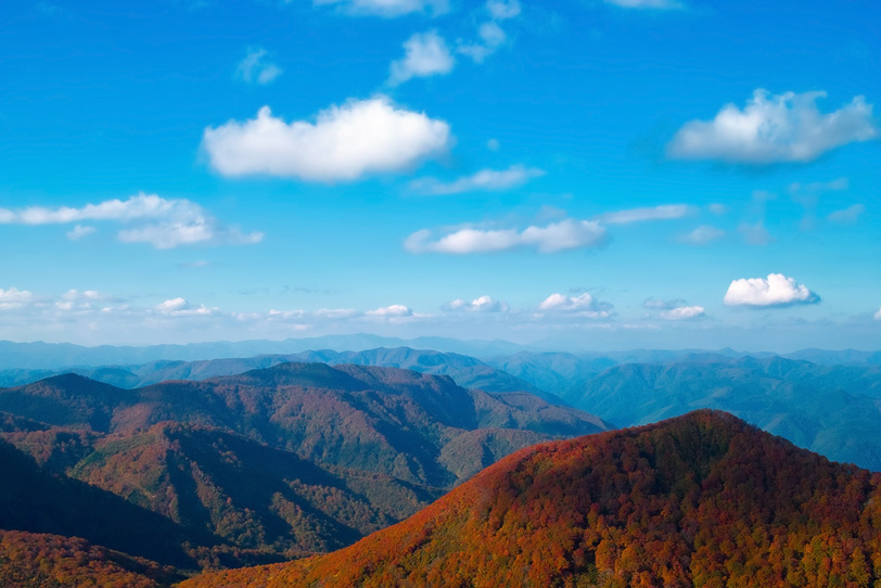 季節が変える山並みの風景の写真画像