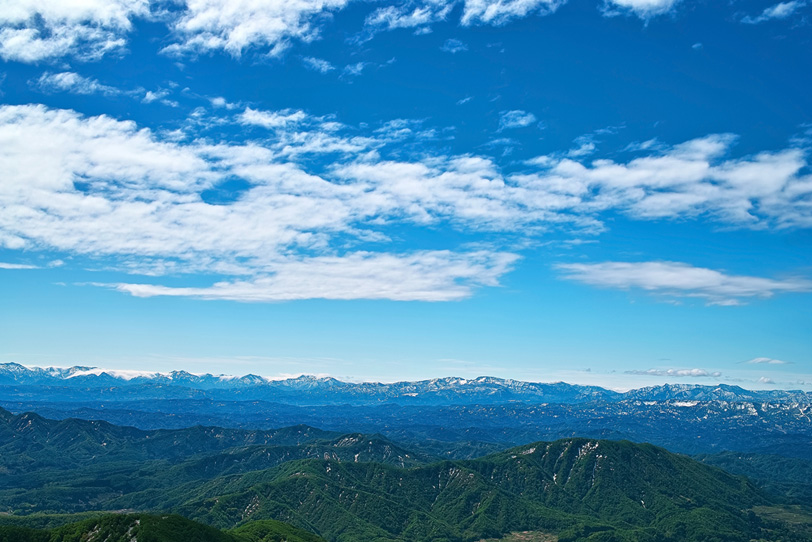 山と森の写真画像