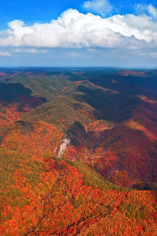 美しい山の景色の写真画像