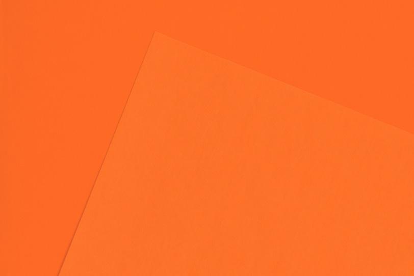 綺麗なオレンジ色のシンプルな写真