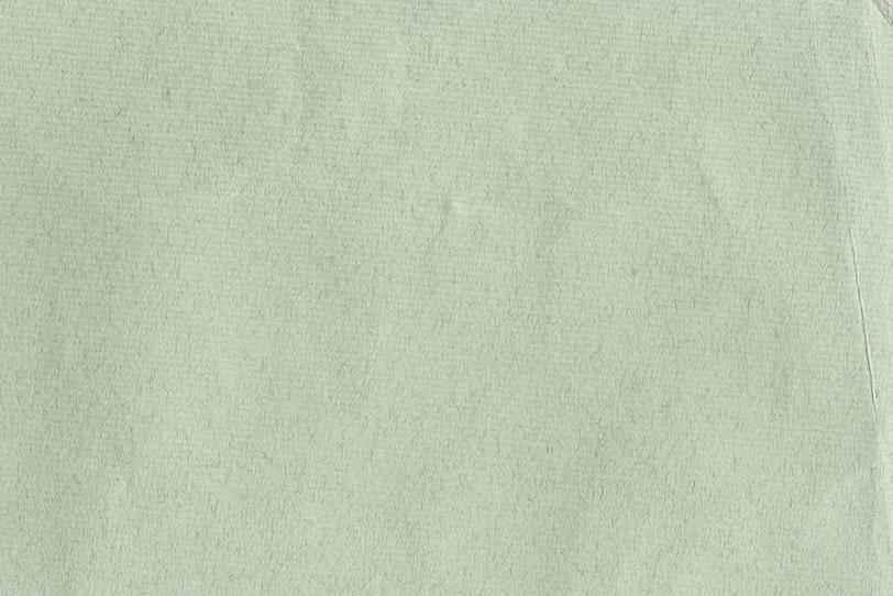繊維のテクスチャがある薄緑の紙の写真画像