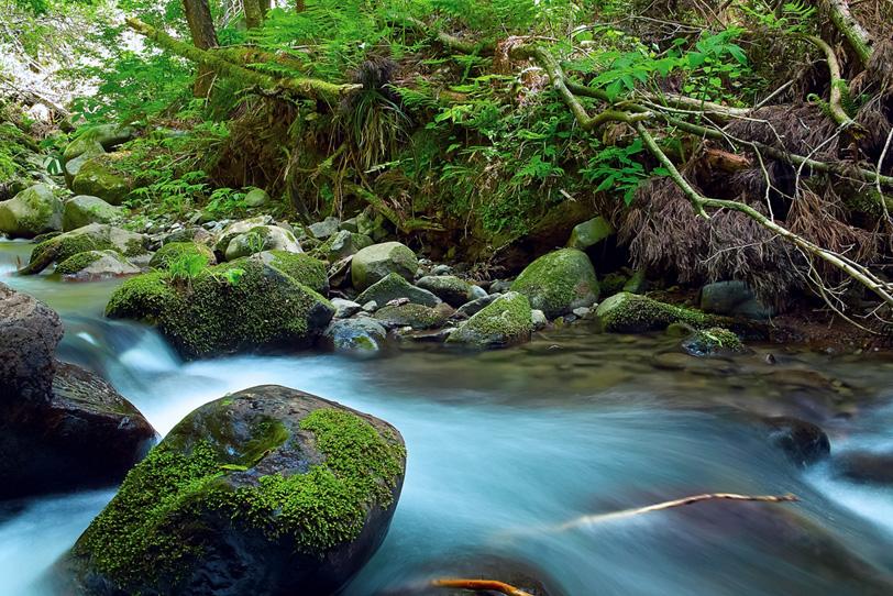 水が静かに流れる川の写真画像