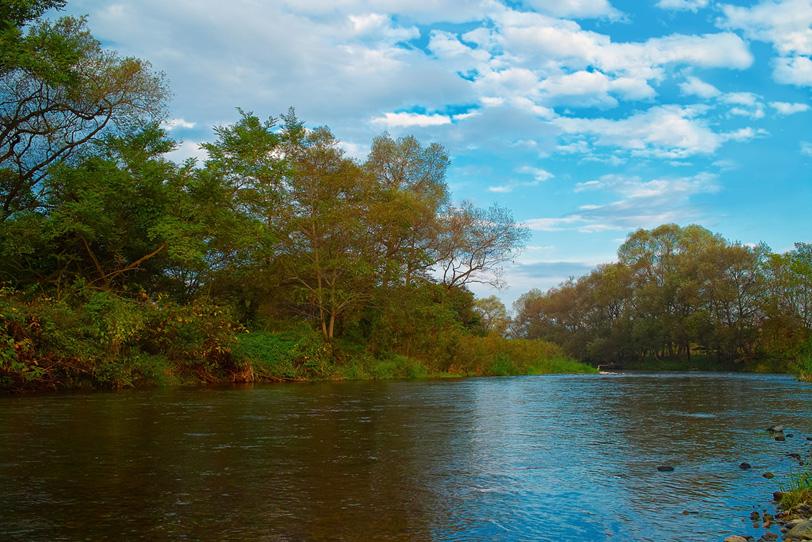 川の水面に映る初秋の風景の写真画像