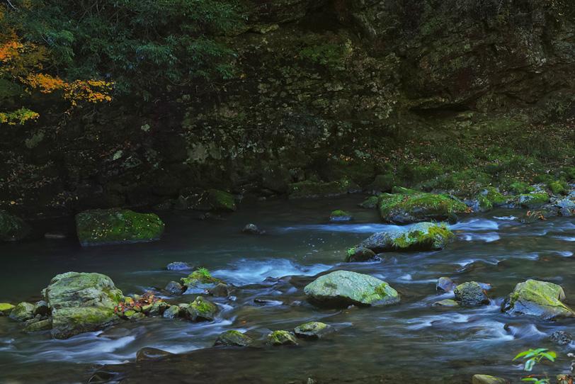 静寂を感じる渓谷の写真画像