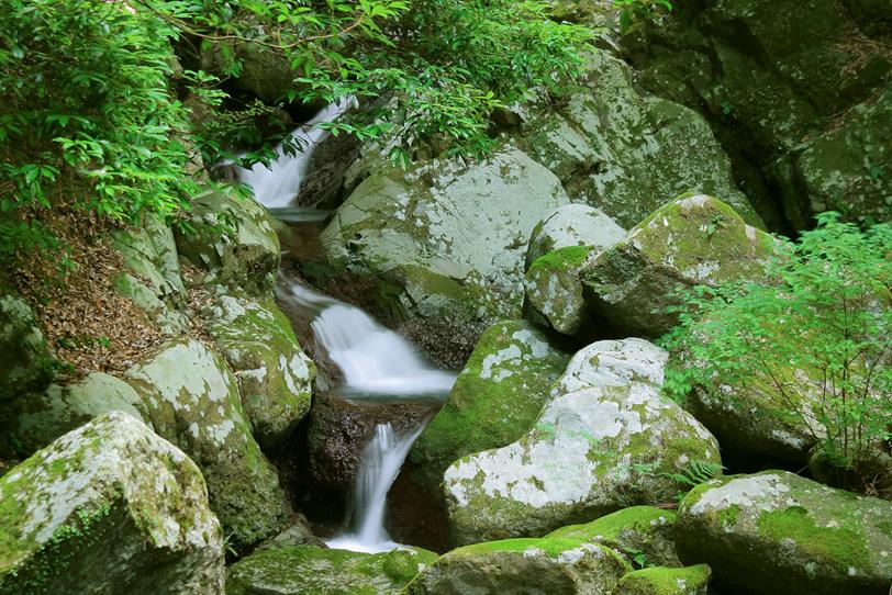 川の源流近くの小さな滝の写真画像