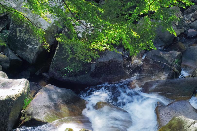 岩が多い谷川の水模様の写真画像