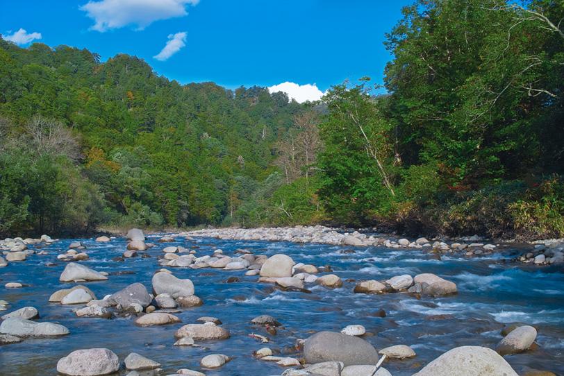夏の河原と浅瀬を流れる水の写真画像