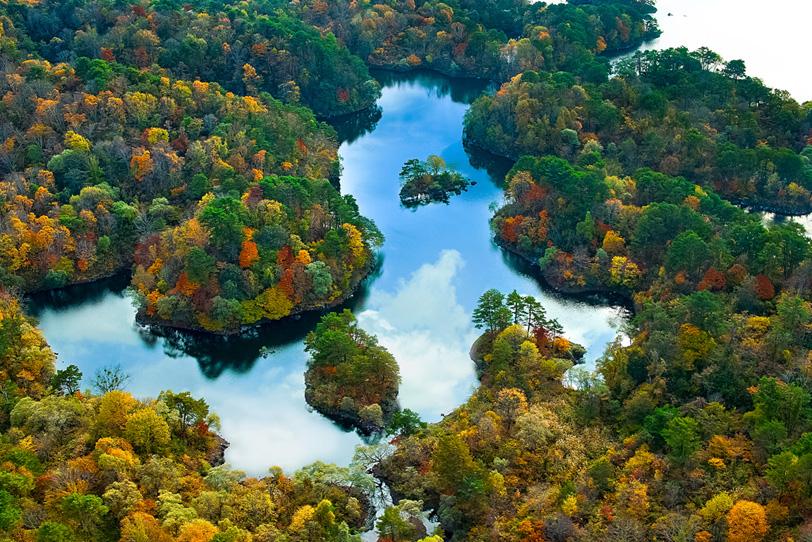 色鮮やかな森に囲まれた湖の写真画像