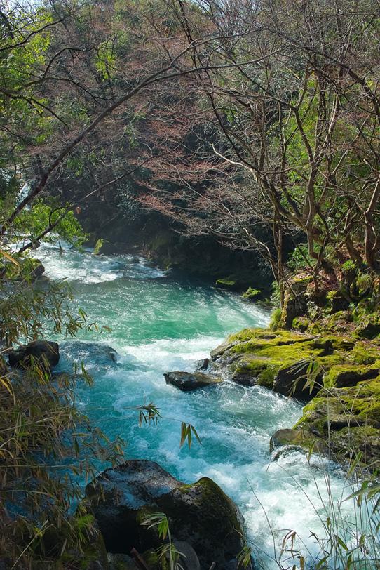 「四季の川」の素材を無料ダウンロード
