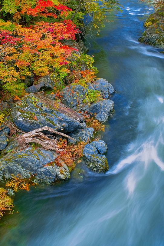 川の風景の写真画像