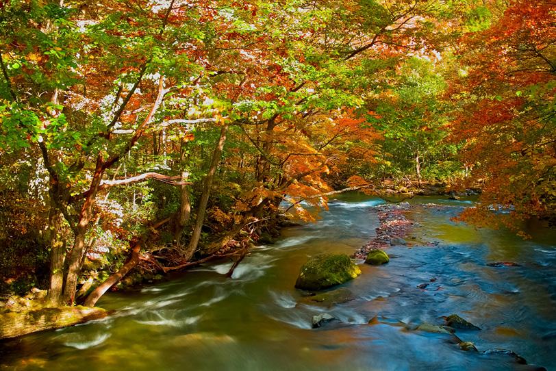 水と川の写真画像