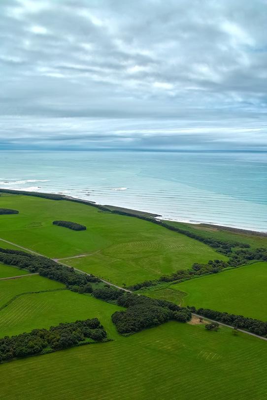海に面した牧草地帯の写真画像