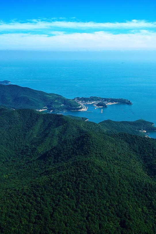 岬にある小さな港町の写真画像