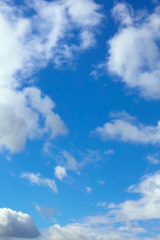 青空に色々な形の雲が浮かぶの写真画像