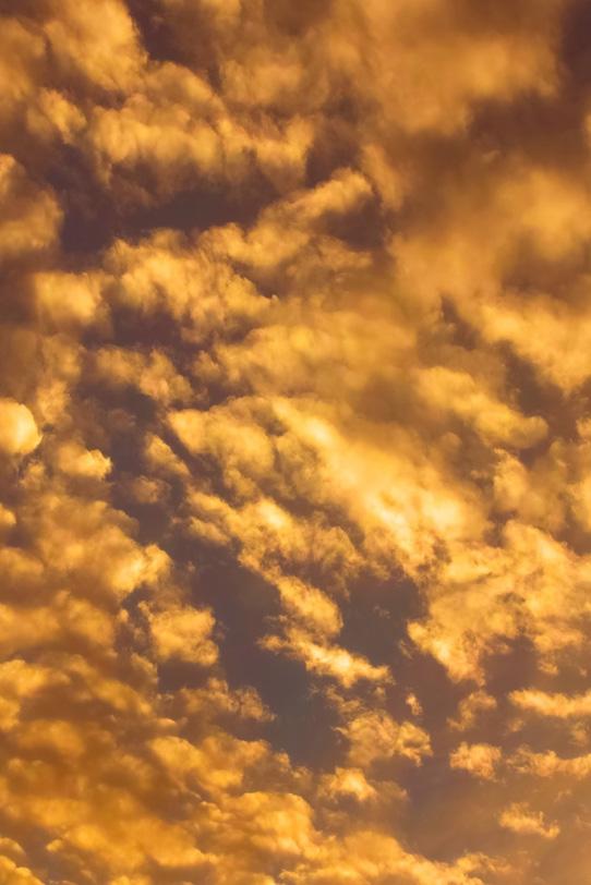 黄金色の雲が夕焼けに光り輝くの写真画像
