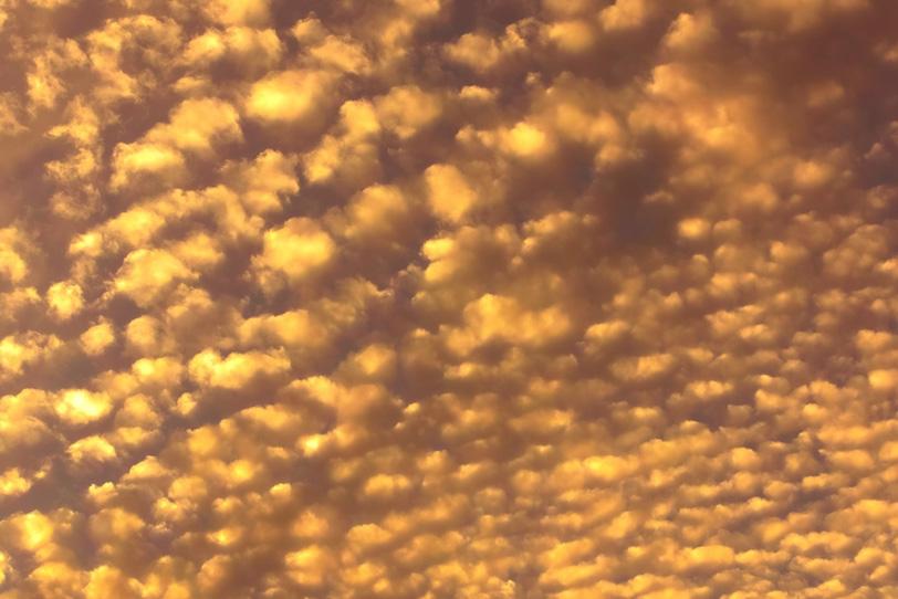 金色のうろこ雲が夕焼けに光るの写真画像