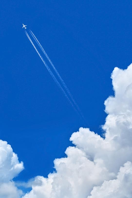 飛行機雲が伸びる夏の青空の写真画像