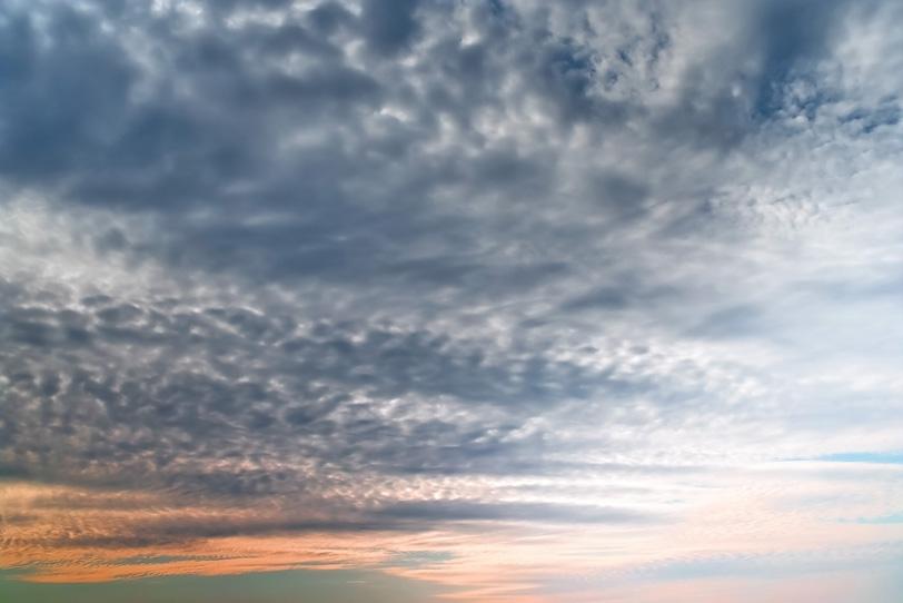 夕焼けに鱗の様な雲が被さるの写真画像