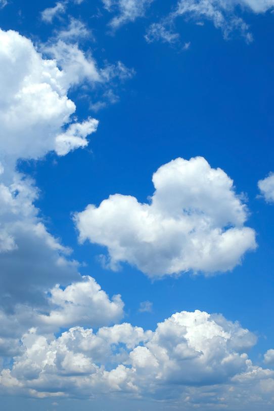 白い並雲が連なる夏の青空の写真画像