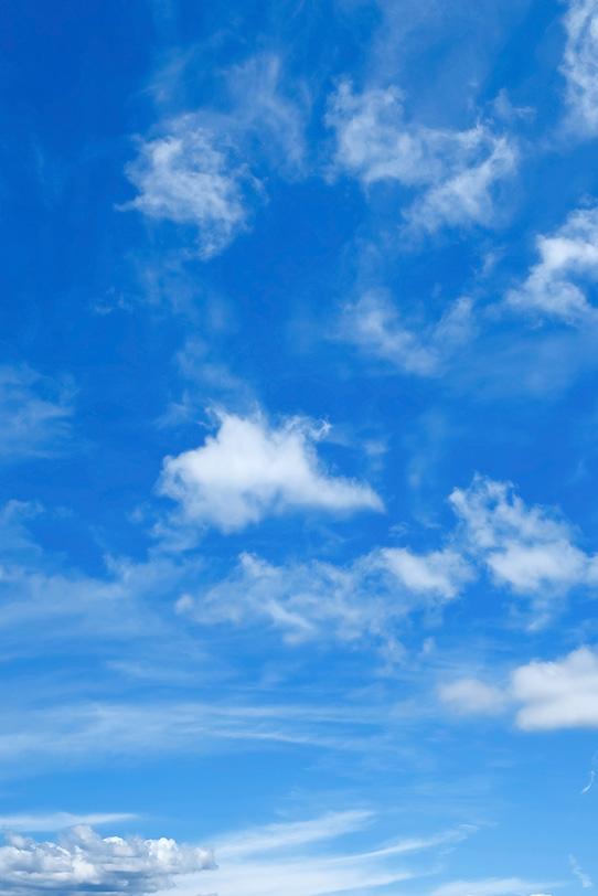 明澄な青空高く踊る薄雲の写真画像