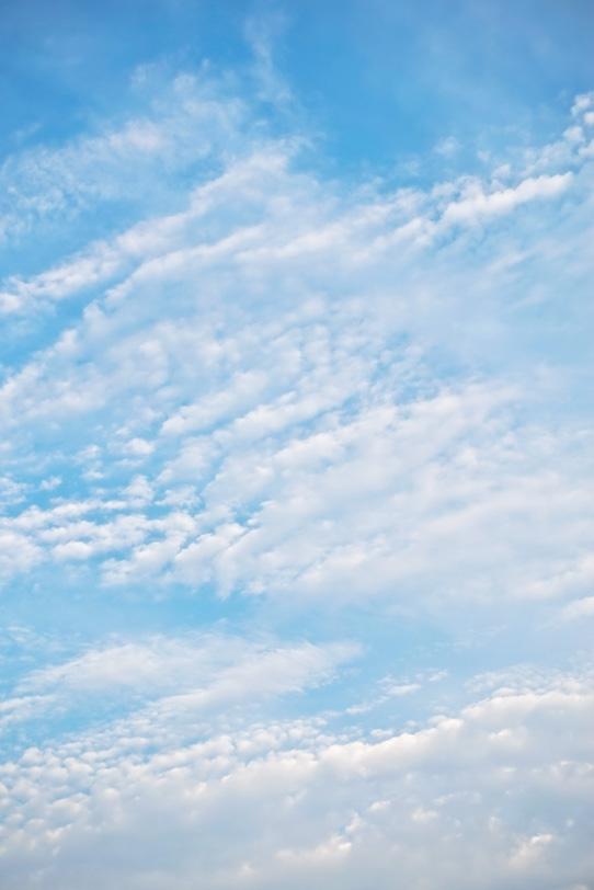 青空に並ぶように浮かぶ高積雲の写真画像
