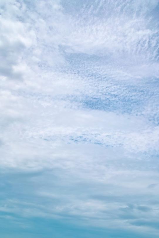青空を覆い尽くす種々雑多な雲の写真画像