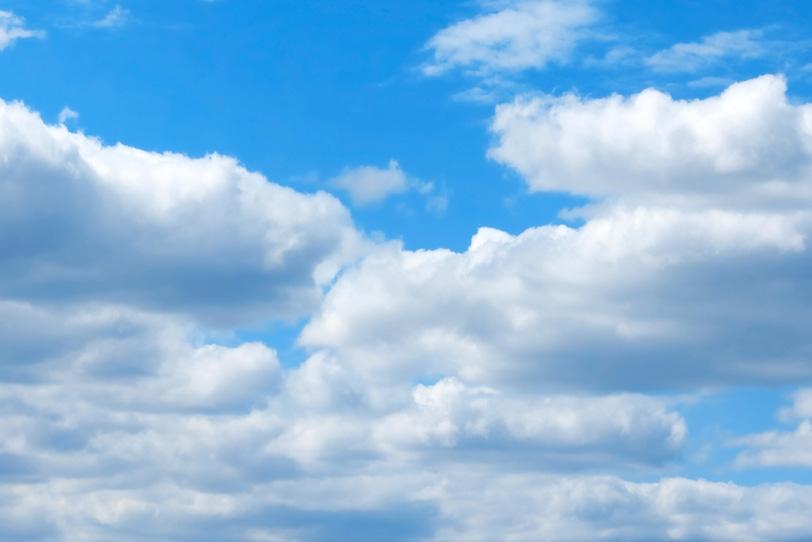 青空の下にむれ集う扁平積雲の写真画像