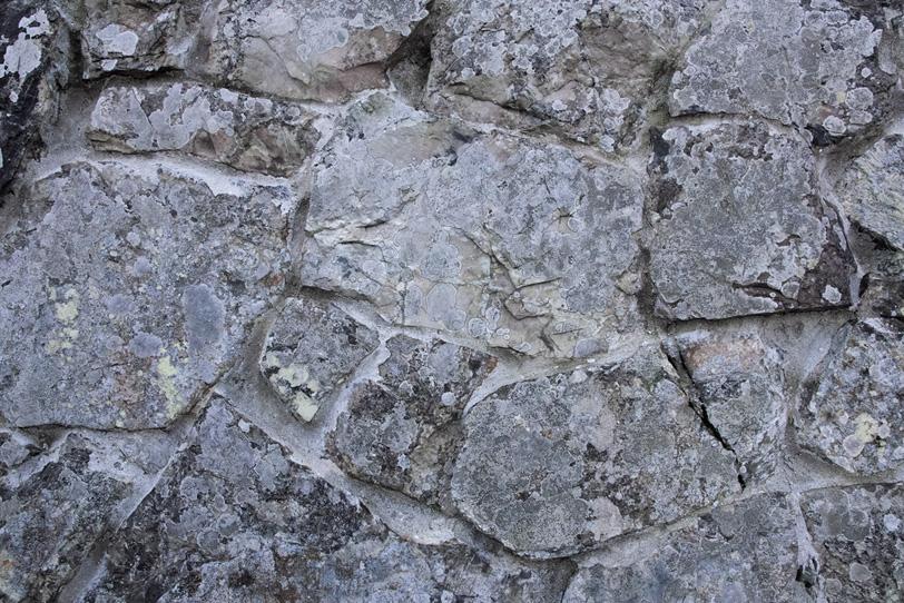 岩のテクスチャーの写真画像