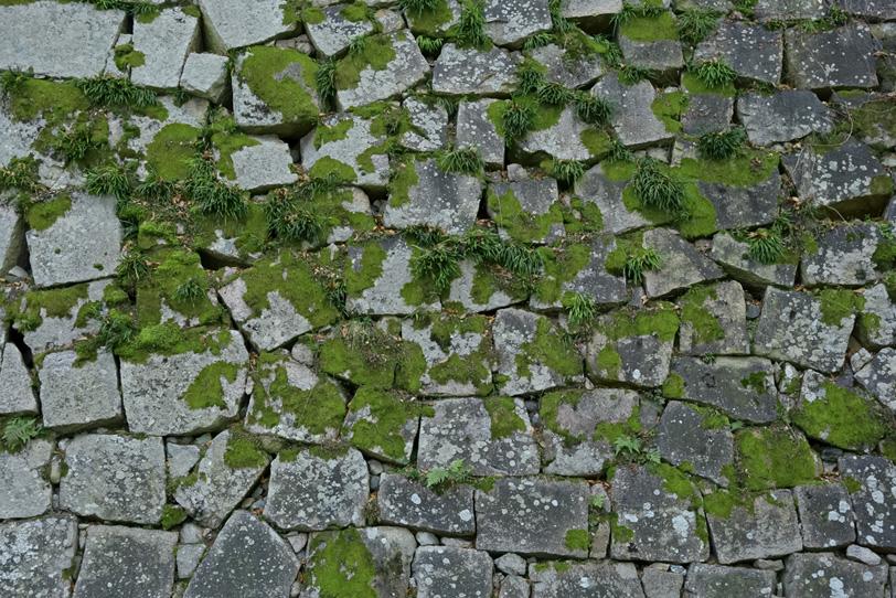 苔の生えた石の城壁の写真画像
