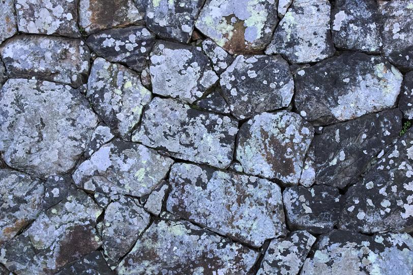白い柄が付いたような石の壁面の写真画像