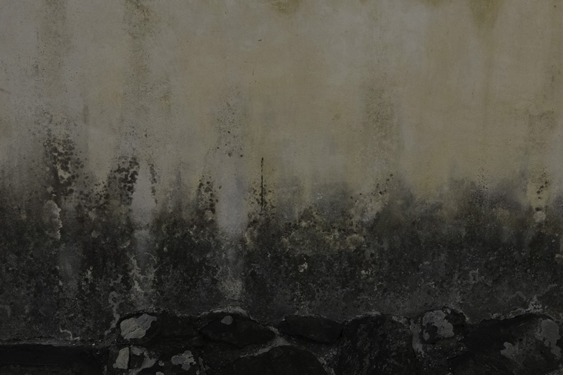 下側が黒く劣化した古い外壁の写真画像