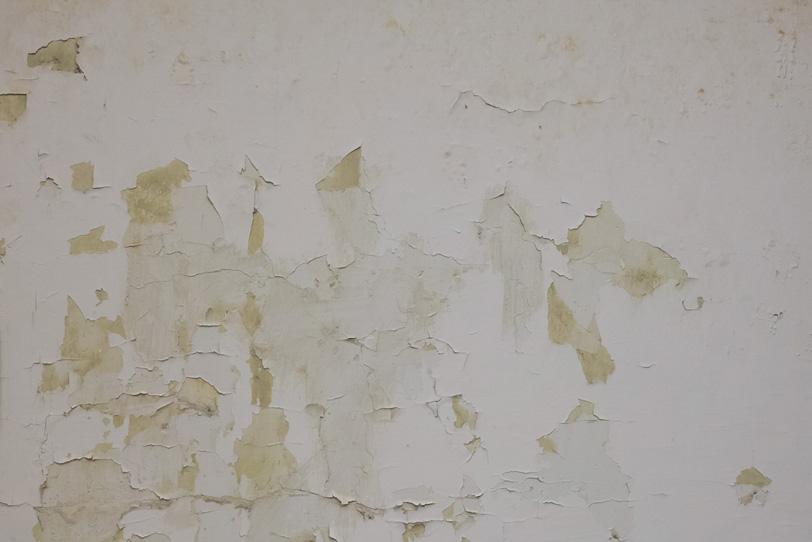 塗装がパリパリに剥がれた壁の写真画像