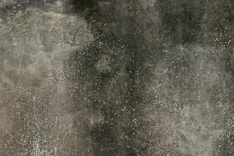 表面に黒ずみと粒のある劣化した壁の写真画像