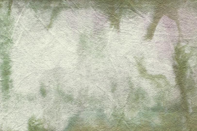 草のような模様がある和紙の写真画像