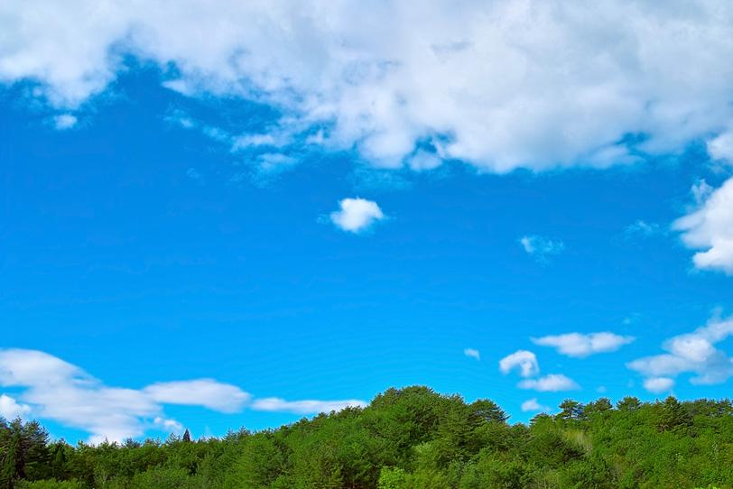 「木と山のイメージ」の素材を無料ダウンロード
