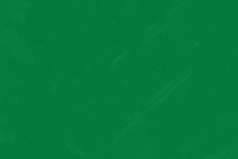 緑のペイントでオシャレな壁紙