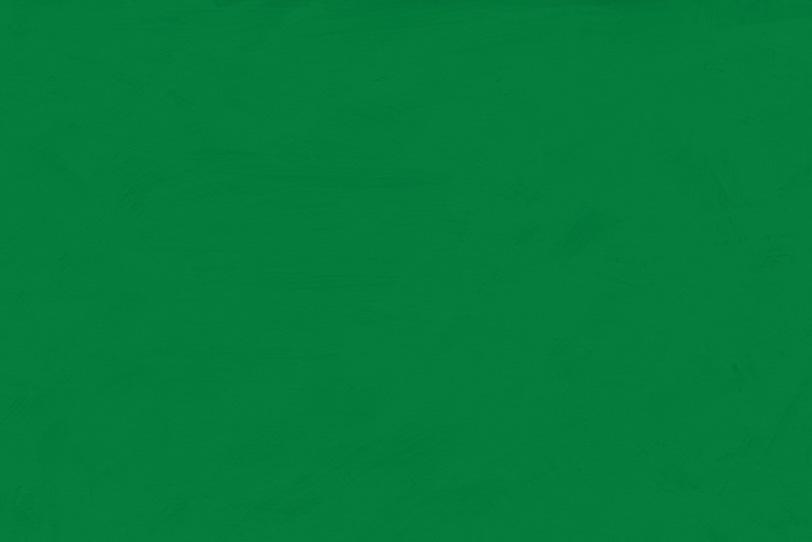 おしゃれなグリーンペイント壁紙