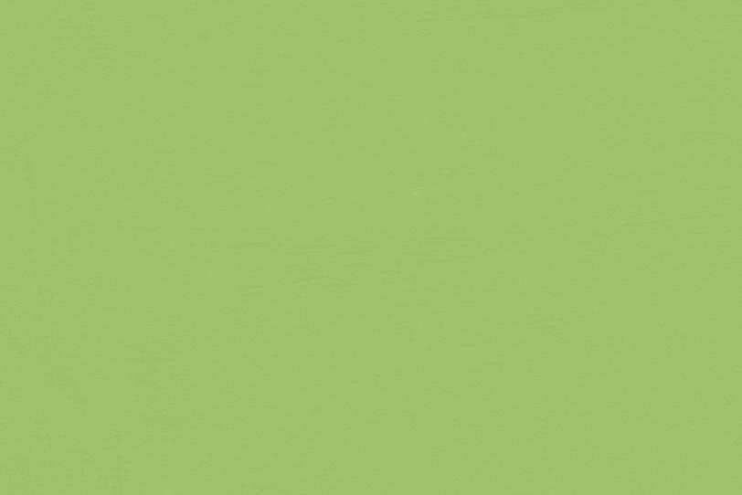 綺麗なパステルグリーンの壁紙