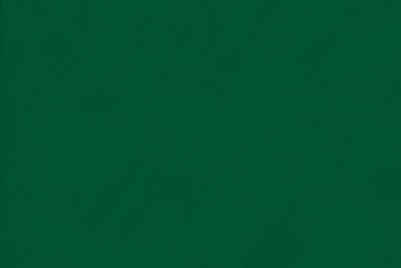 深緑色で無地のシンプルな壁紙
