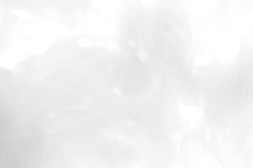 おしゃれな白の綺麗な画像