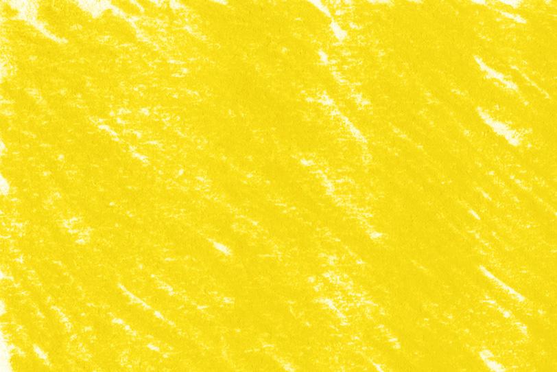 背景が黄色の可愛い写真