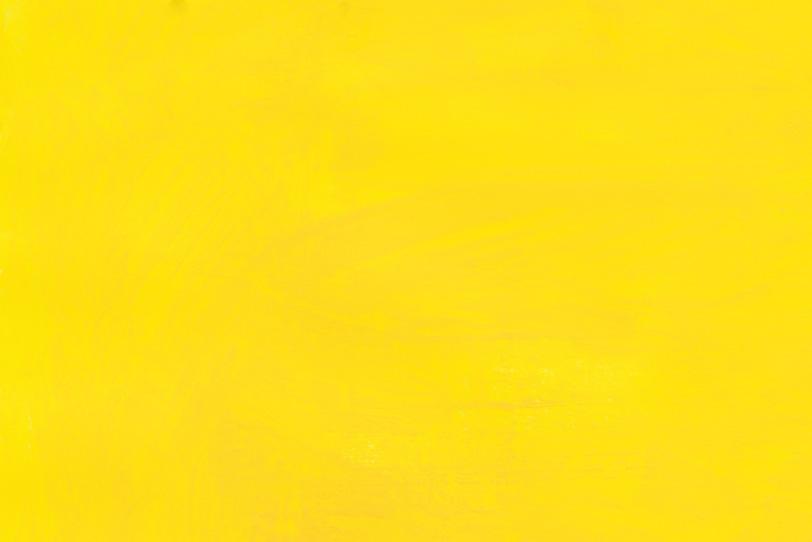 黄色の無地でクールな写真