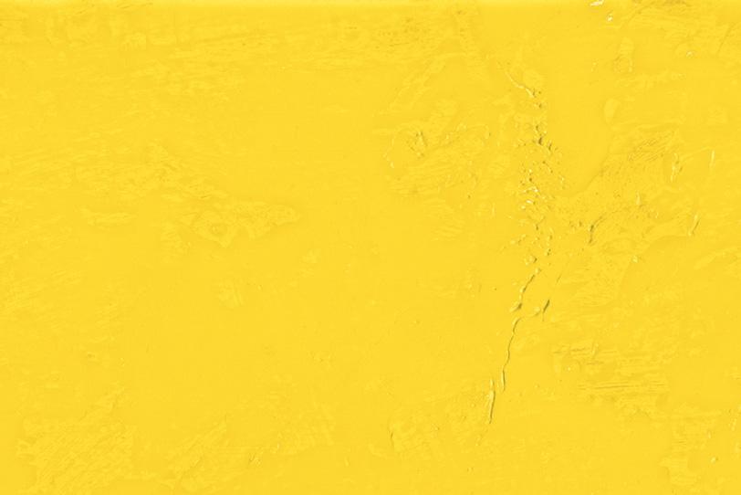 無地の黄色の可愛い写真