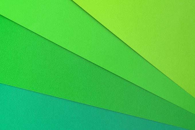 若葉のような緑系のカラー