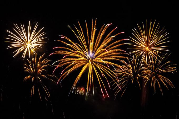 金色椰子の木の打ち上げ花火の風景(花火 フリーの画像)