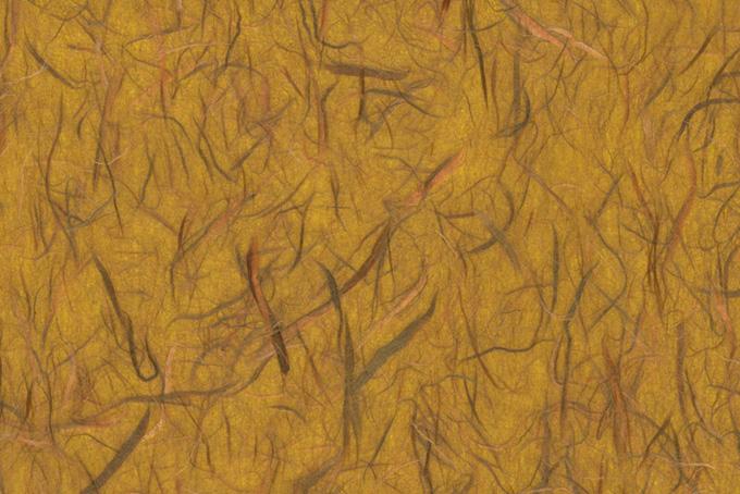 茶色い楮が沢山ある紙