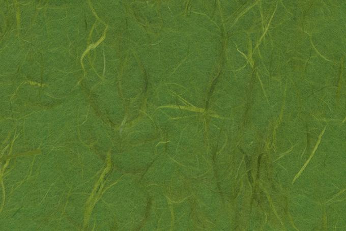 筋のテクスチャがある深緑色の雲竜和紙