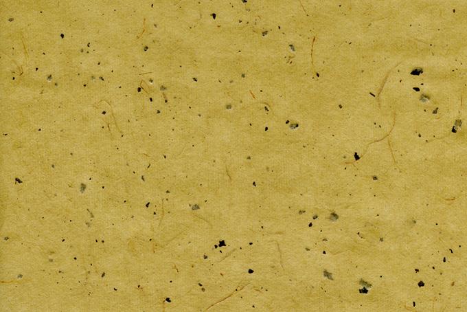 筋と皮がある櫨染色の和紙