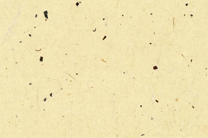 黒皮が入った薄黄色の和紙