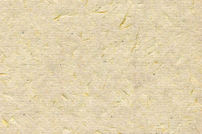 楮と細い繊維のテクスチャがある和紙